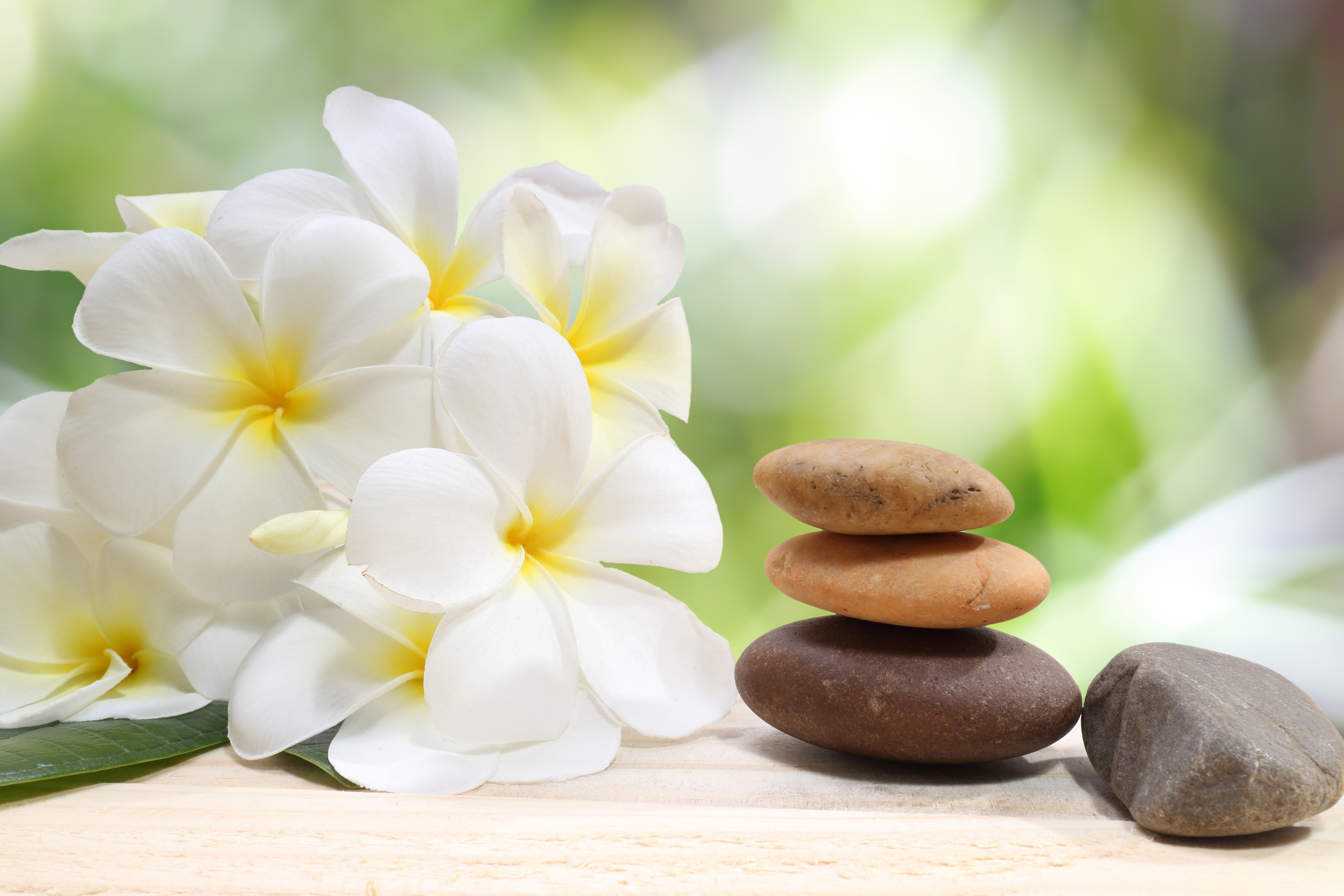 Zen spa concept background - Zen massage stones with frangipani plumeria flower